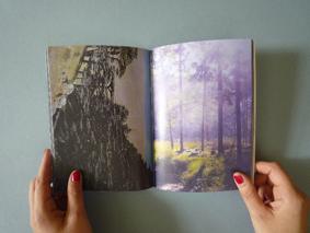 huismetdearendboek3